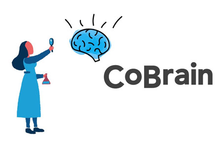 Deputy Prime Minister: COBRAIN Program will introduce best  international experience in Armenia